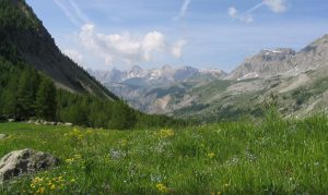 Camping Rhône-Alpes